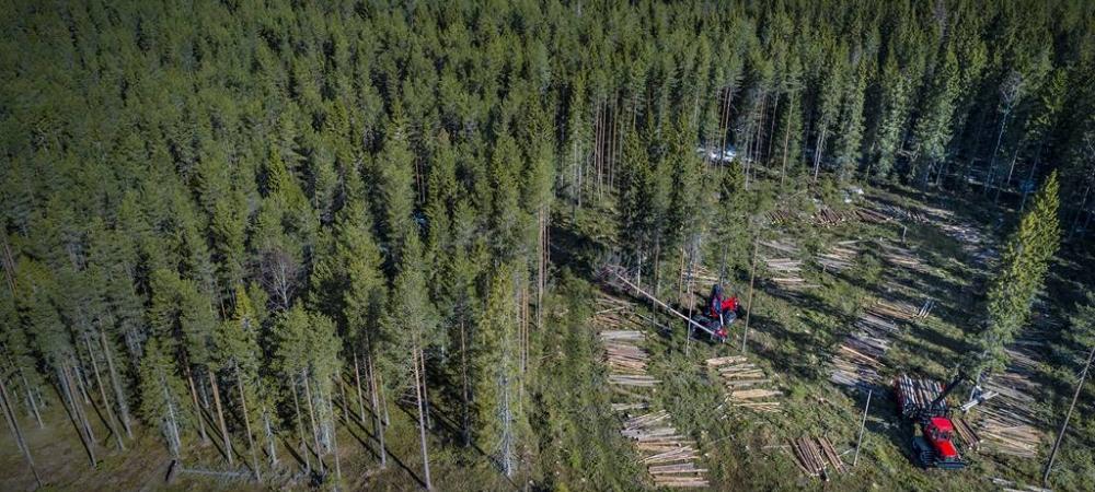 Komatsu Forest prezentē jaunās 2020. gada meža mašīnu iespējas